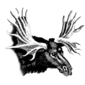 cropped-rookroon-favicon-1.png